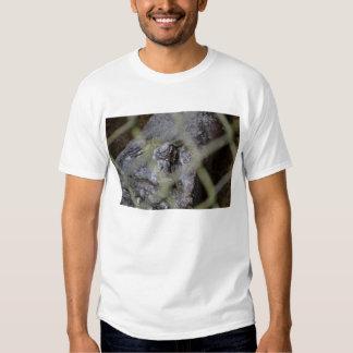 alligator eye through fence reptile animal gator tshirts