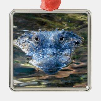 Alligator Eyes Metal Ornament