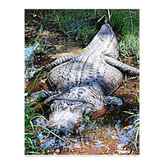 Alligator (Florida, Louisiana and Mississippi) Letterhead