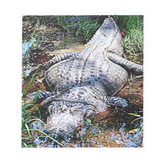 Alligator (Florida, Louisiana and Mississippi) Notepad
