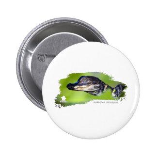 Alligator Hatchling 01 2 Inch Round Button