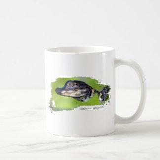 Alligator Hatchling 01 Mugs