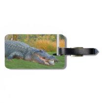 Alligator, Hazardous Lie in Golf Luggage Tag