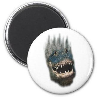 Alligator Head Shot-Huge reptiles Magnet