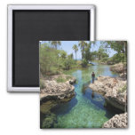 Alligator Hole, Black River Town, Jamaica 2 Inch Square Magnet