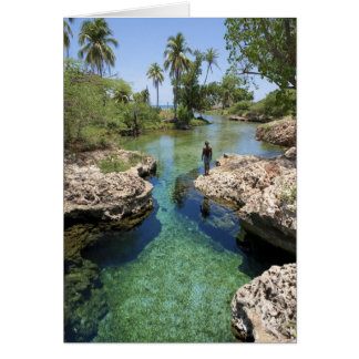 Alligator Hole, Black River Town, Jamaica Greeting Card