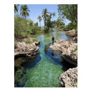 Alligator Hole, Black River Town, Jamaica Postcard