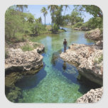 Alligator Hole, Black River Town, Jamaica Stickers