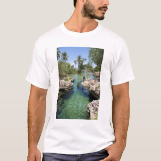 Alligator Hole, Black River Town, Jamaica T-Shirt