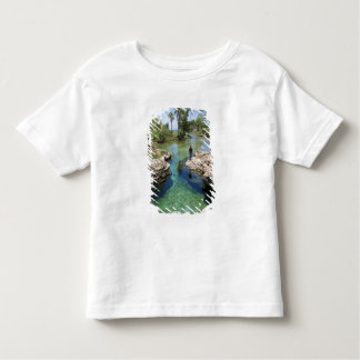 Alligator Hole, Black River Town, Jamaica Toddler T-shirt