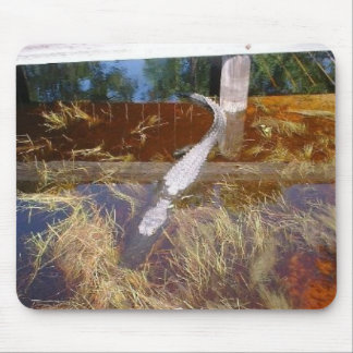 Alligator in the Grass Mouse Pad