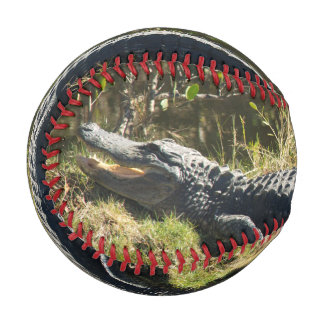 Alligator in the Sun Baseballs