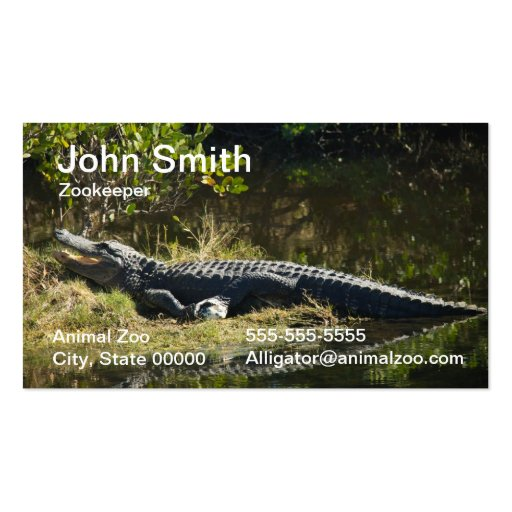 Alligator in the Sun Business Card