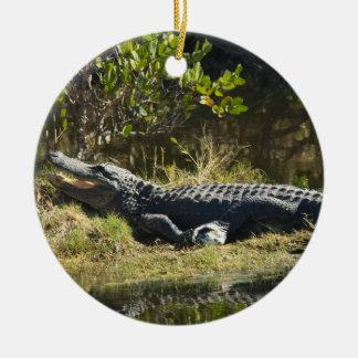 Alligator in the Sun Ceramic Ornament