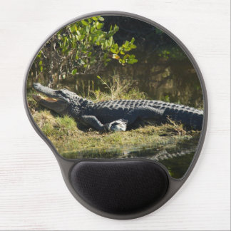 Alligator in the Sun Gel Mouse Pad