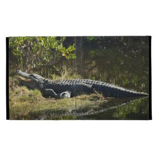 Alligator in the Sun iPad Case