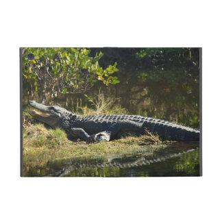 Alligator in the Sun iPad Mini Cases
