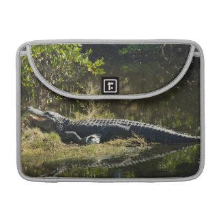 Alligator in the Sun Sleeve For MacBook Pro