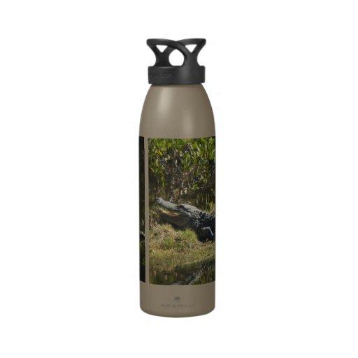 Alligator in the Sun Reusable Water Bottle
