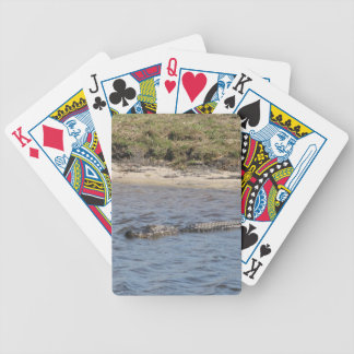 Alligator in the Water Bicycle® Playing Cards