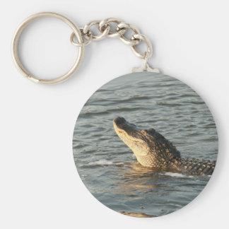 Alligator in the water. basic round button keychain