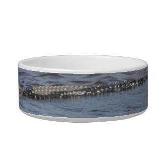 Alligator in the Water Pet Bowl