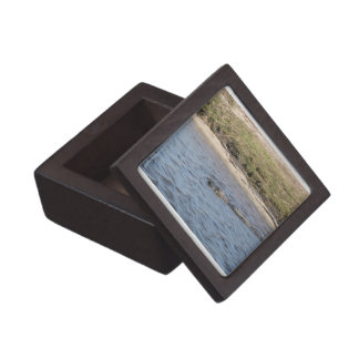 Alligator in the Water Premium Gift Box