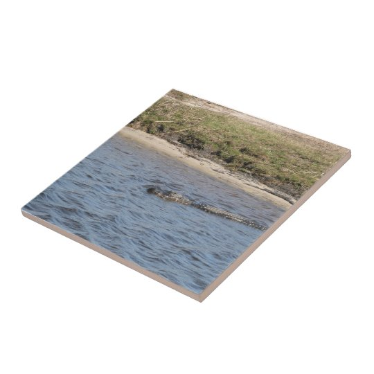 Alligator in the Water Tile