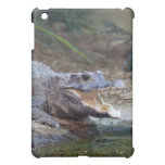 alligator iPad mini cases