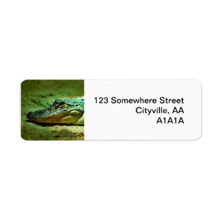 Alligator Return Address Label
