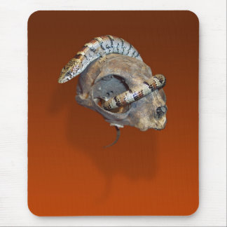Alligator Lizard on a Cat Skull Mouse Pad