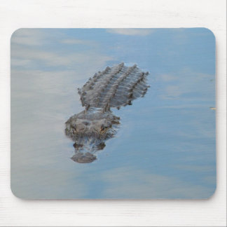 alligator mouse pad