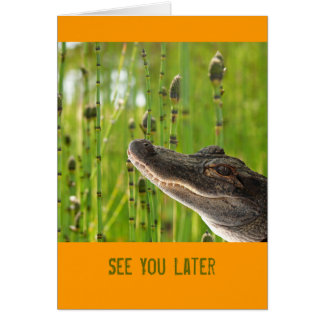 Alligator New Job Card