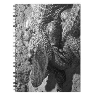 Alligator Notebook