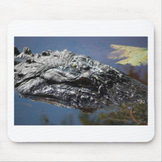 Alligator of North Carolina Mouse Pad