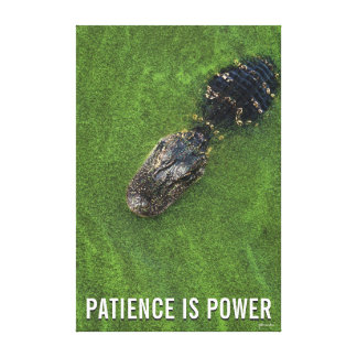 Alligator • Patience is Power • Florida Nature Canvas Print