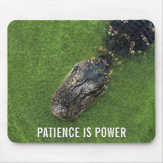 Alligator • Patience is Power • Florida Nature Mouse Pad