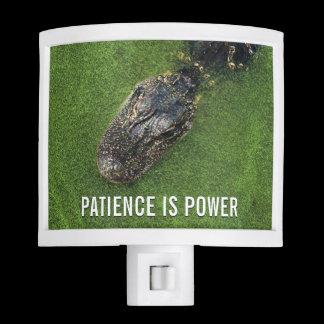 Alligator • Patience is Power • Florida Nature Night Light