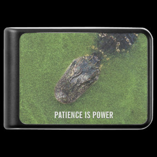 Alligator • Patience is Power • Florida Nature Power Bank