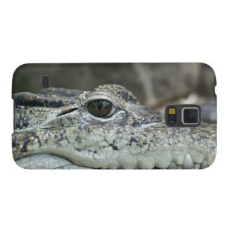 Alligator Photo Galaxy S5 Case