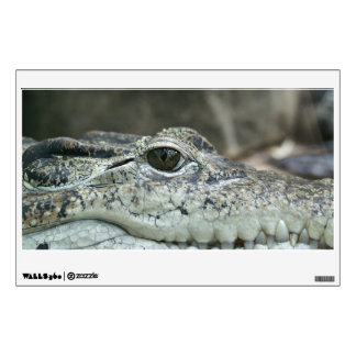 Alligator Photo Wall Decal