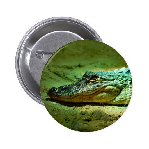 Alligator Pinback Buttons