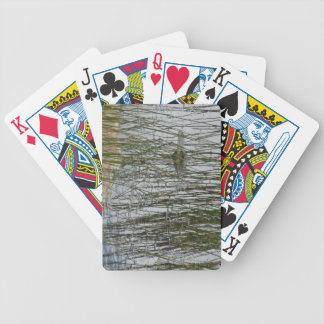 Alligator Card Decks