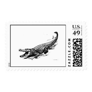 Alligator Postage