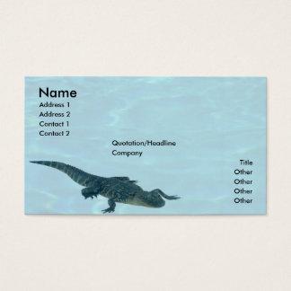 Alligator Profile Card