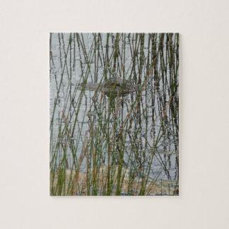 Alligator Puzzles