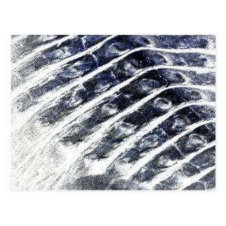 alligator scales neat abstract invert pattern postcard