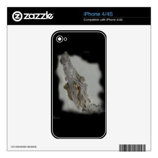 Alligator iPhone 4S Skins