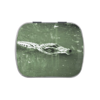 alligator swimming head green tint reptile candy tins
