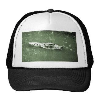 alligator swimming head green tint reptile mesh hat